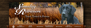 Kamloops website design | Someday Retrievers